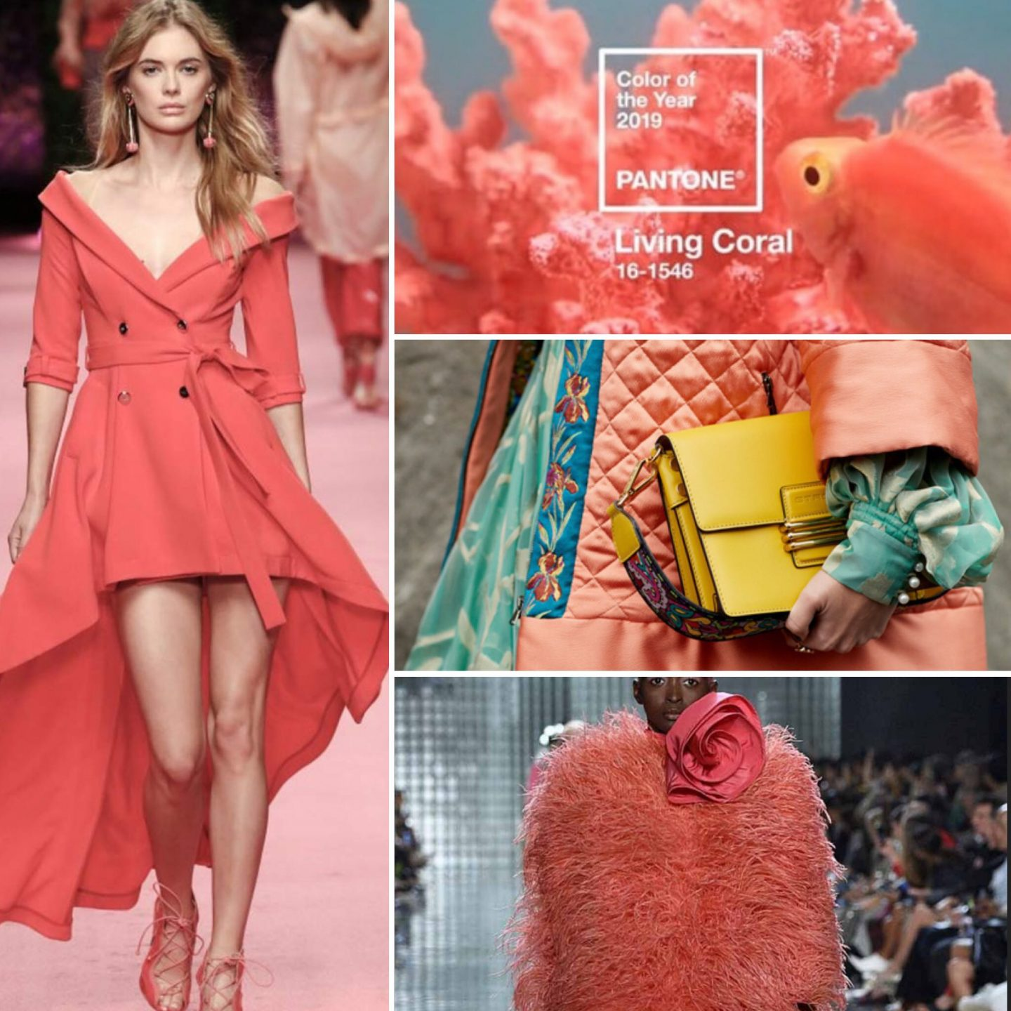 Color of the Year 2019: Living-Coral