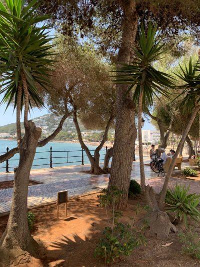 Santa Eulària Strand und Beachclub
